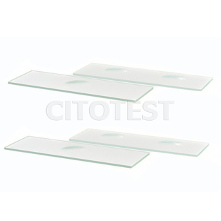 Microscope Slides with Cavity